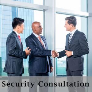PSI Security Service Consultation in Georgia